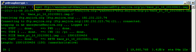 FTP download using wget